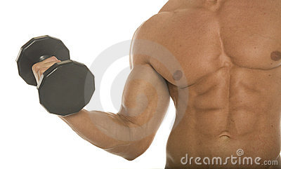 Body builder arm and chest