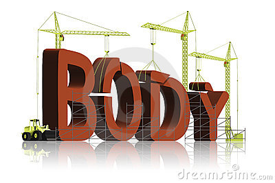 Body building fitness muscle workout exercise gym