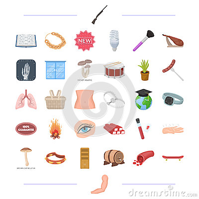 Body, medicine, food and other web icon in cartoon style.man, decoration, tool icons in set collection. Vector Illustration