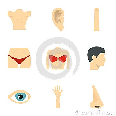 Body parts icons set, flat style Vector Illustration