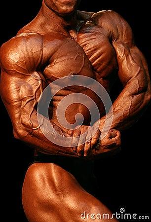 Free Bodybuilder Stock Image - 385511