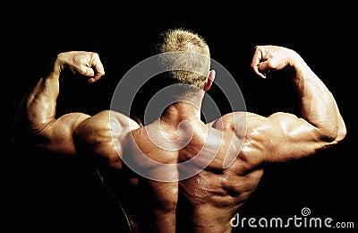 Bodybuilders back