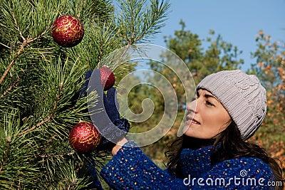 Boże narodzenia target2064_0_ drzewa