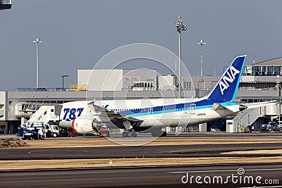 Boeing 787 sbarcato in caso d emergenza Fotografia Editoriale