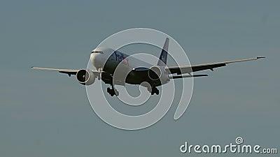 Boeing 777 des lignes aériennes de Federal Express Fedex s'approchant à l'aéroport clips vidéos