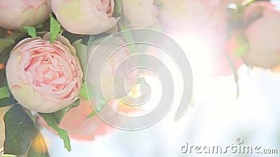 Boeket van bleek - roze bloemen stock videobeelden