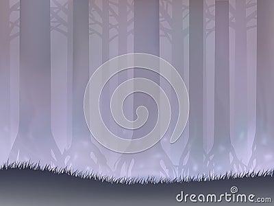 Bog forest