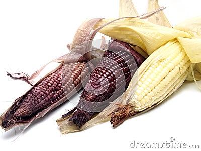 Boiled black corn