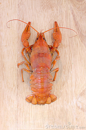 Boiled crawfish on a wood
