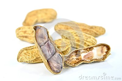 Boiled peanut on white background