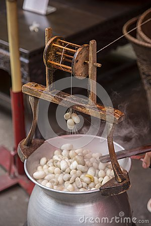 Free Boiling Silkworm Cocoon In Pot Royalty Free Stock Images - 107482829