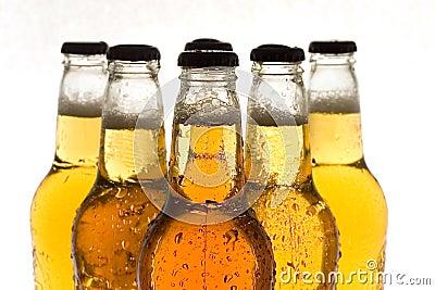 Boissons : Bière