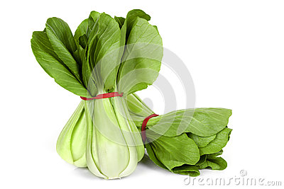 Bok Choy Isolated