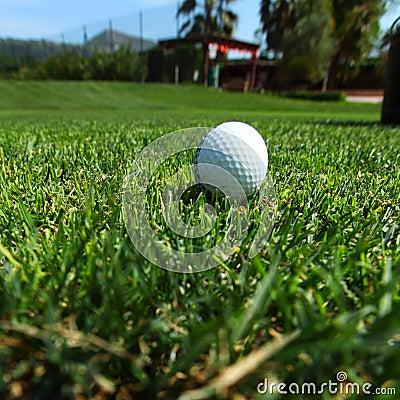 Bola de golfe no curso