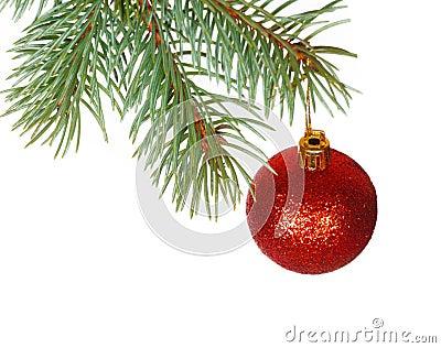 Bola roja en la rama del árbol de navidad