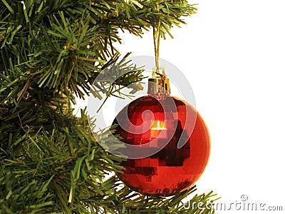 Bola roja en árbol