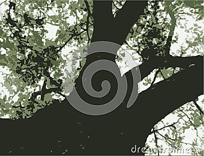 Bold Tree Graphic