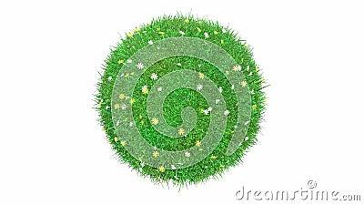 Boll av gräs och små blommor