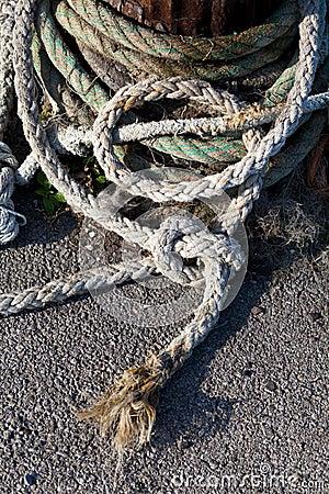 Bollard with Ropes