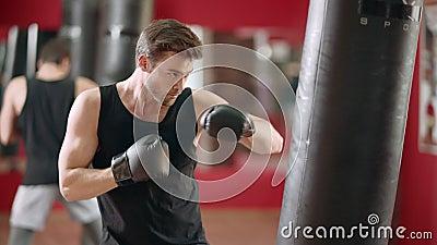 Bolso de perforación del combate del boxeador del hombre en club del boxeo Retroceso del entrenamiento del deportista del primer metrajes