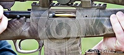Bolt-action rifle