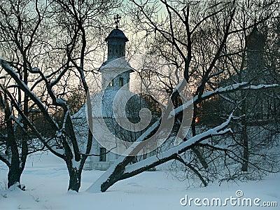 Bomen op de achtergrond van de kerk