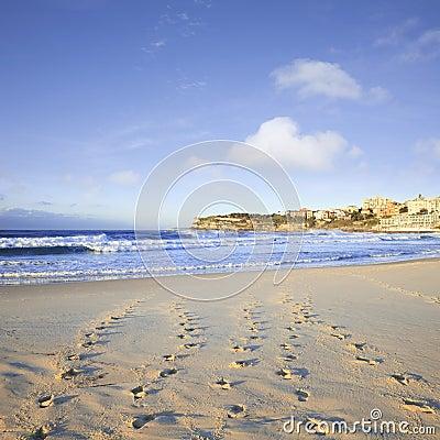 Bondi Beach Sydney Australia Foodtprints and Surf