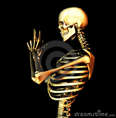Bone 10