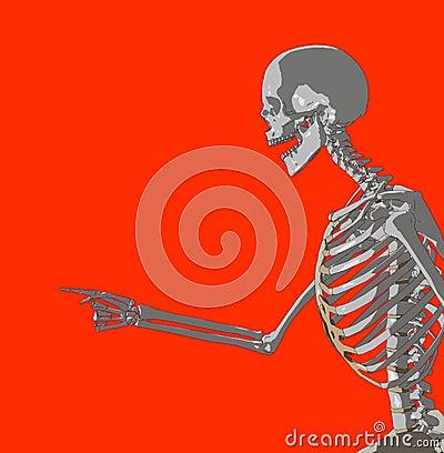 Bone 227