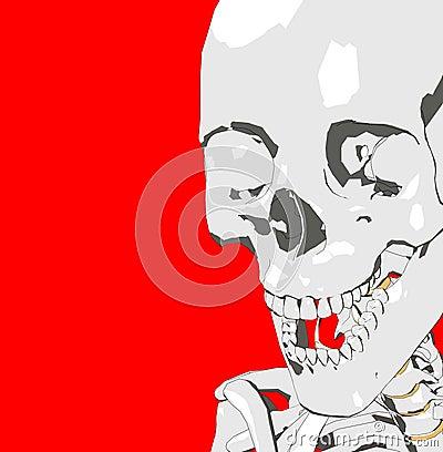 Bone 232