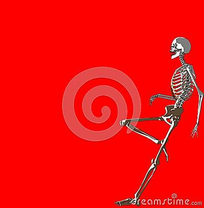 Bone 237