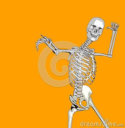 Bone 82