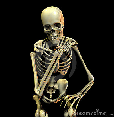 Free Bone Pose 20 Royalty Free Stock Photo - 616365