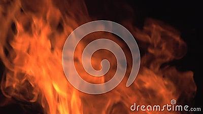 Bonefire,火在营火,露营地发火焰在博茨瓦纳, 影视素材