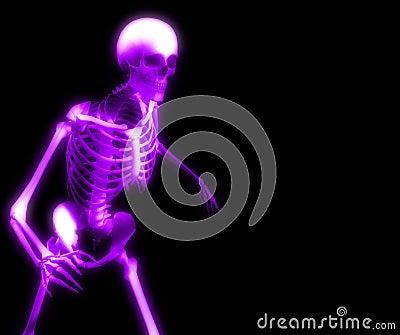 Bones 27