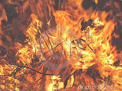 Bonfire Flames close-up