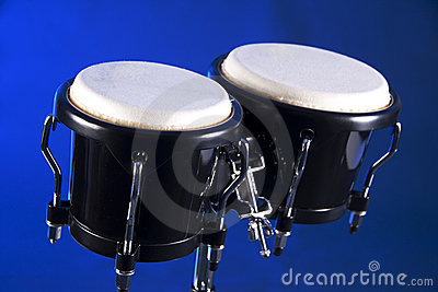 Bongos isolated on Blue Background