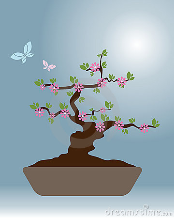 Bonsai 2 - vector design