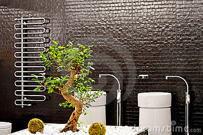 Bonsai bathroom