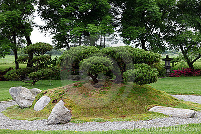 Bonsai in chinese stone garden