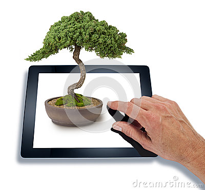 Bonsai Computer Tablet Technology