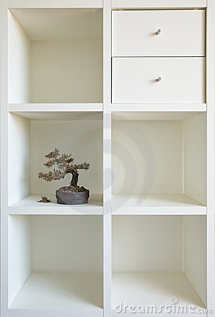 Bonsai shelf I