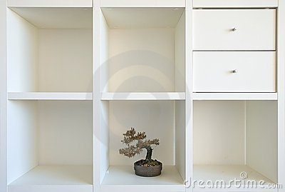 Bonsai shelf II