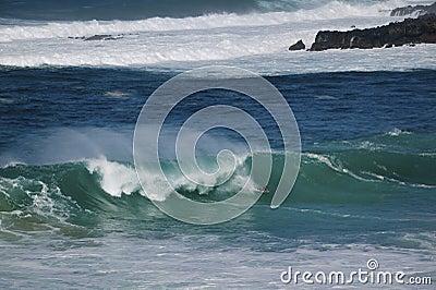 Boogie die, de Kust van het Noorden, Oahu, Hawaï inscheept