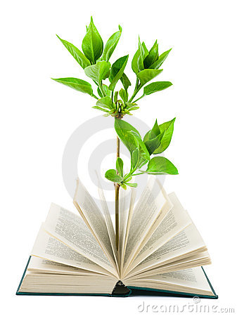 Free Book And Plant Stock Image - 13177741
