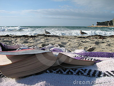 Book at beach with seagulls