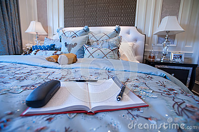 A book in a Blue Bedroom in a mansion