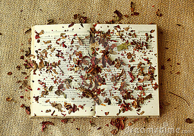 Book Covered with Autumn Leaves on Burlap