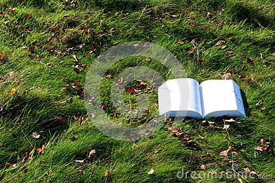 Book lying open on grass