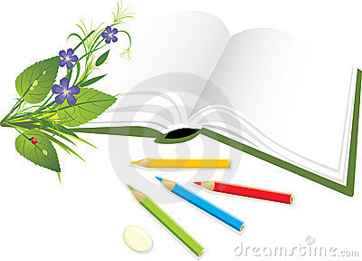 Book, pencils and bouquet of flowers with ladybird